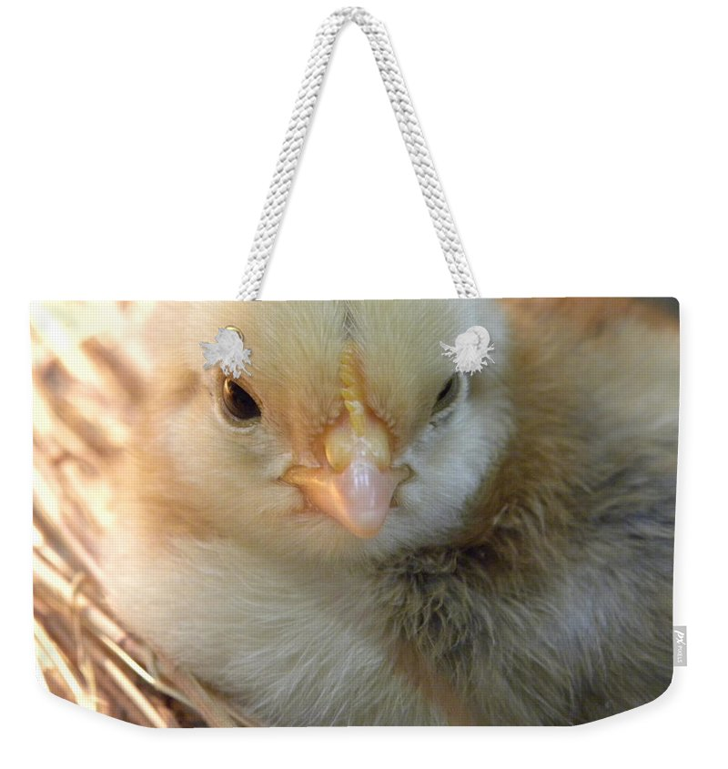 Chick Weekender Tote Bag featuring the photograph Wink by Sheri Lauren