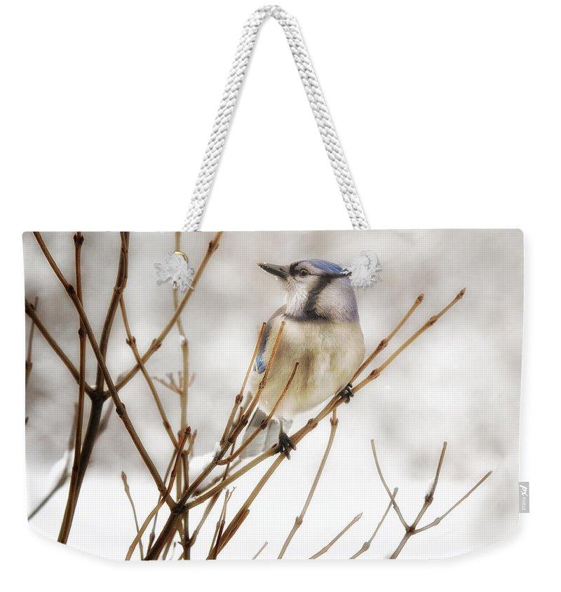 Cyanocitta Cristata Weekender Tote Bags