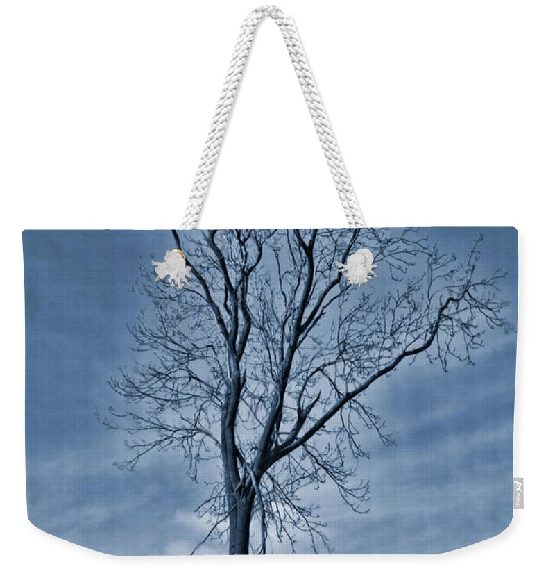 Flooded Tree Weekender Tote Bag featuring the painting Winter Floods by John Edwards