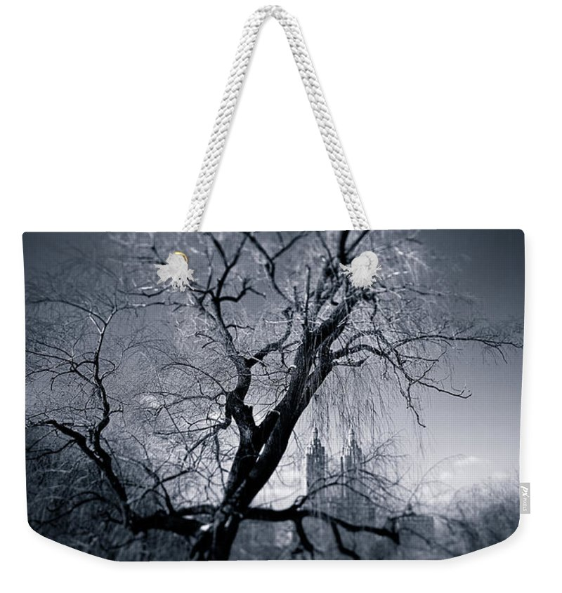 New York Weekender Tote Bag featuring the photograph Winter In Central Park by Dave Bowman