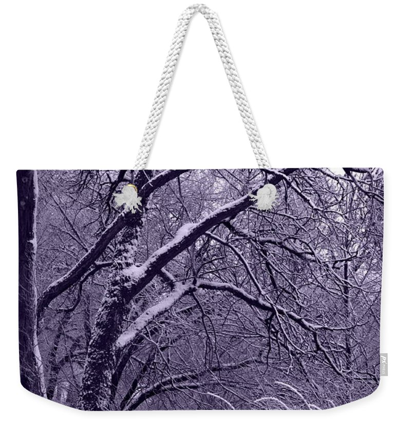 Winter Weekender Tote Bag featuring the photograph Winter In Purple by Carol Groenen