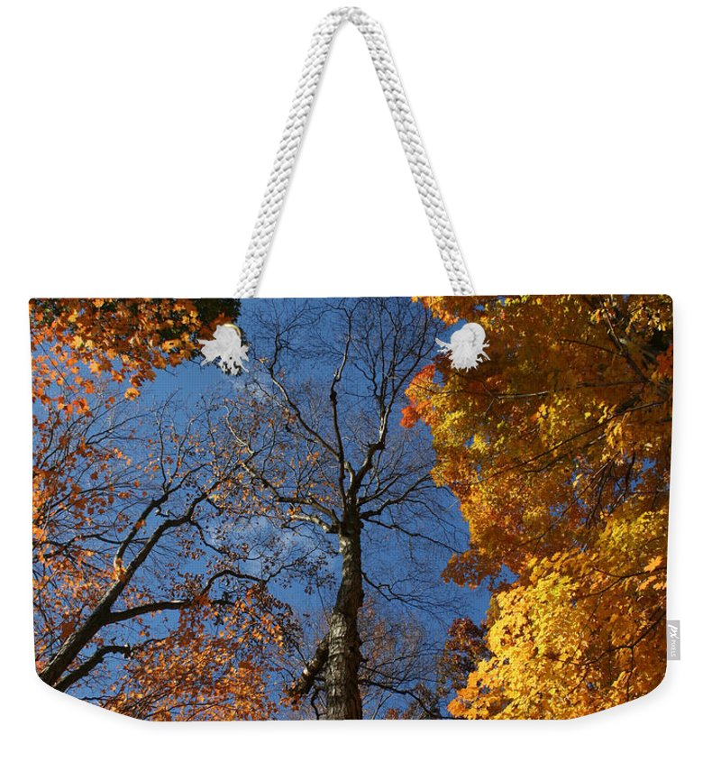 Autumn Weekender Tote Bag featuring the photograph Winter Is Coming by William Selander