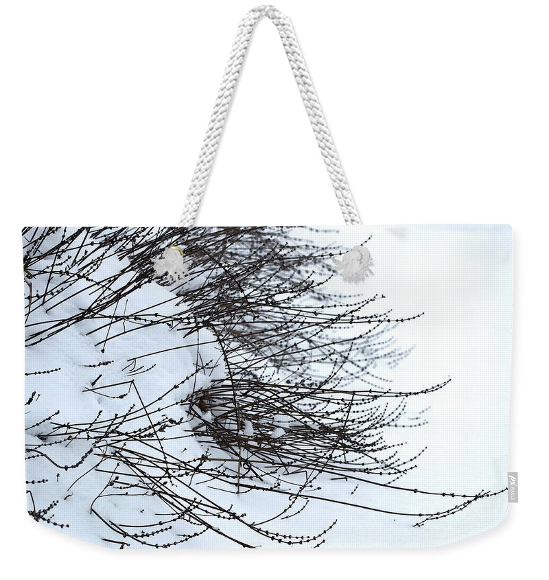 Snow Weekender Tote Bag featuring the photograph Winter Lavender by Gwyn Newcombe