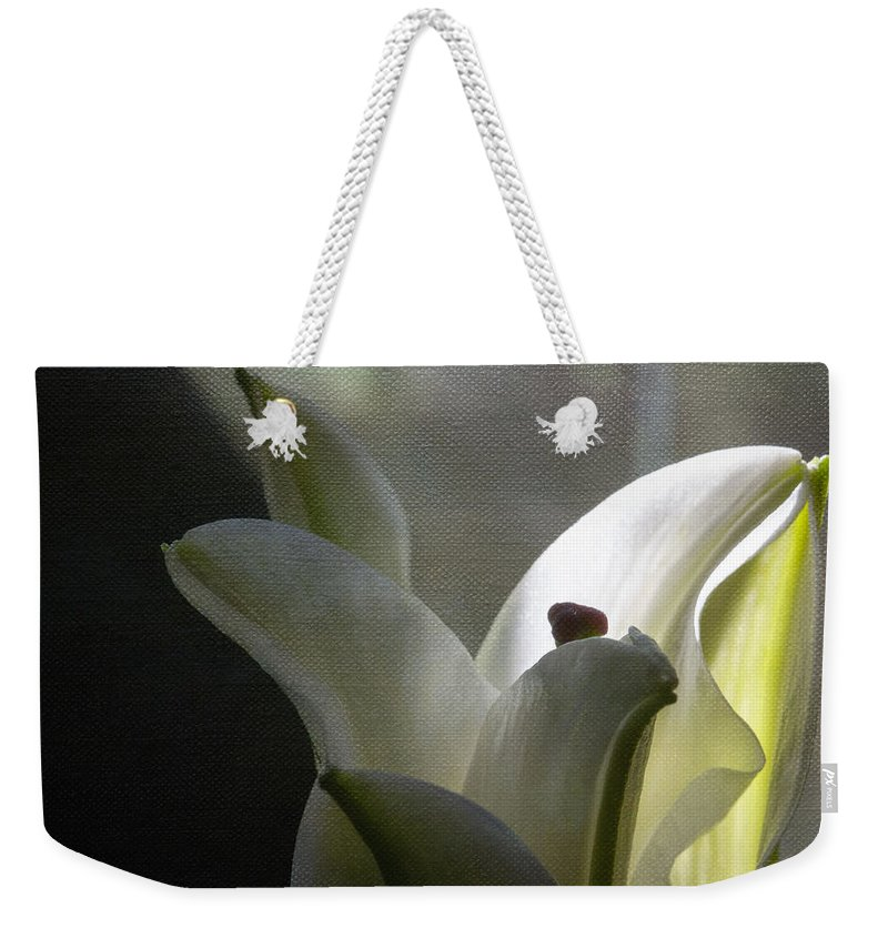 Botanicals Weekender Tote Bag featuring the photograph Winter Lily by Linda Dunn