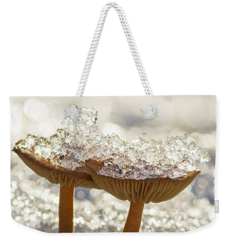 Winter Weekender Tote Bag featuring the photograph Winter Mushrooms by Mircea Costina Photography