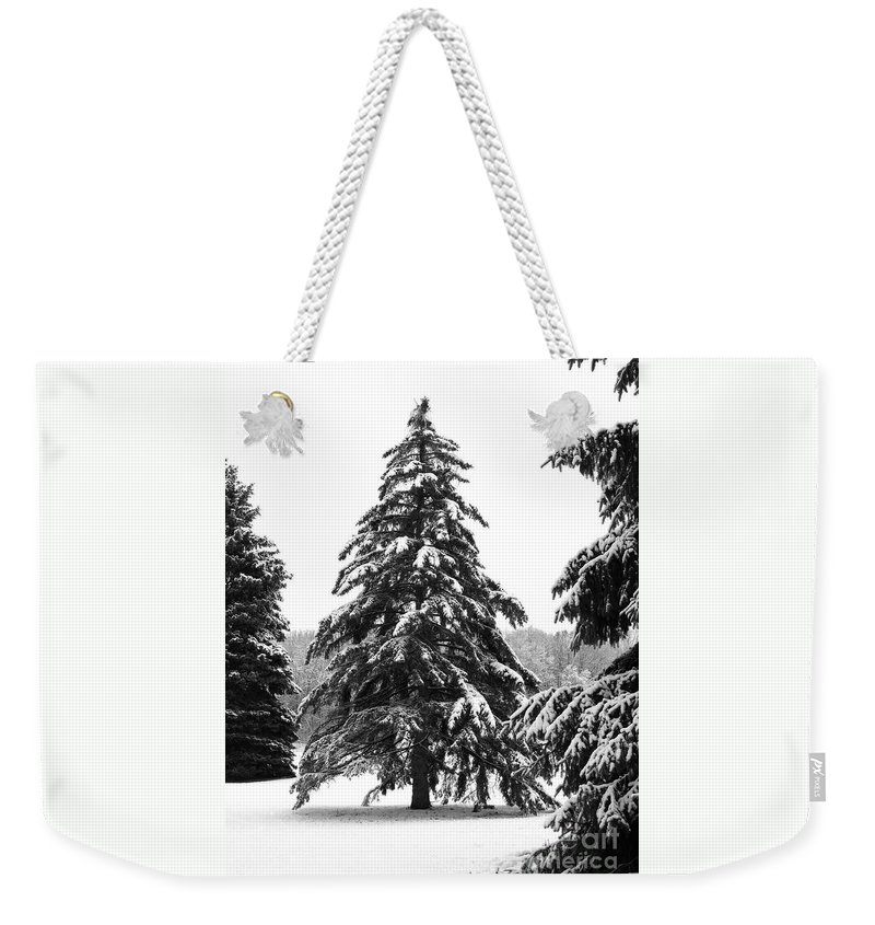 Winter Weekender Tote Bag featuring the photograph Winter Pines by Ann Horn