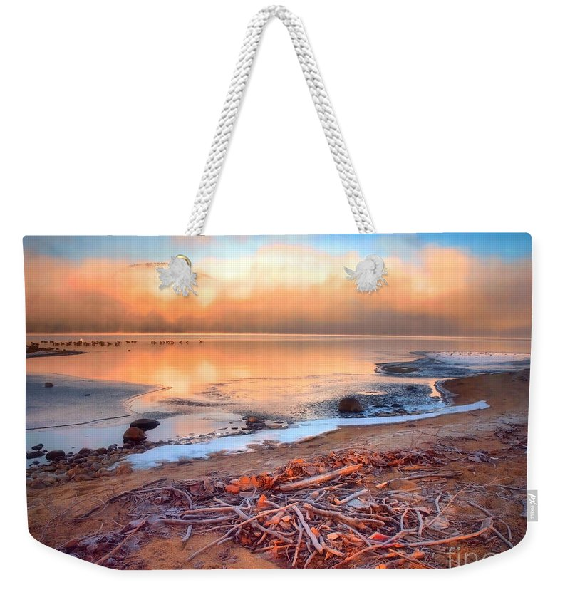 Sticks Weekender Tote Bag featuring the photograph Winter Shore by Tara Turner