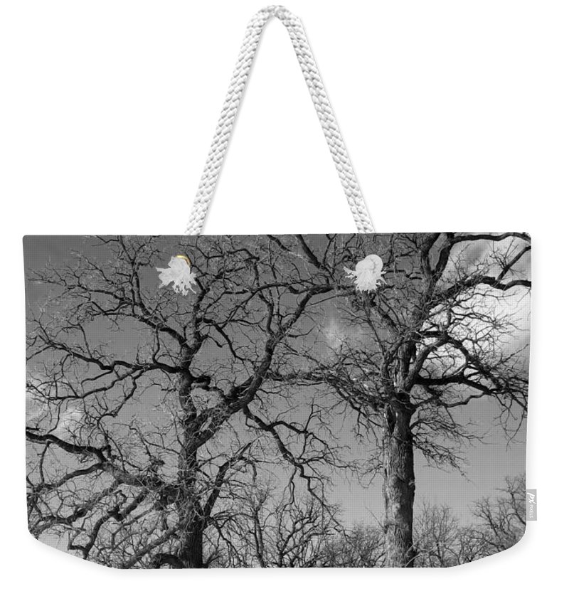 Creative Weekender Tote Bag featuring the photograph Winter Sisters by Jennifer E Doll