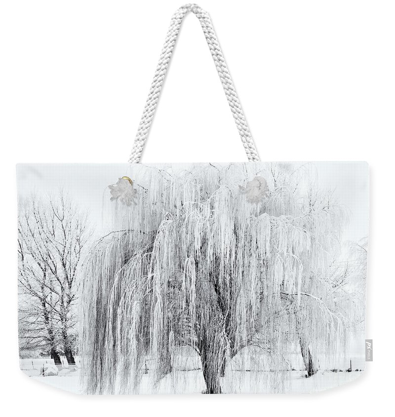 Willow Weekender Tote Bag featuring the photograph Winter Willow by Mike Dawson