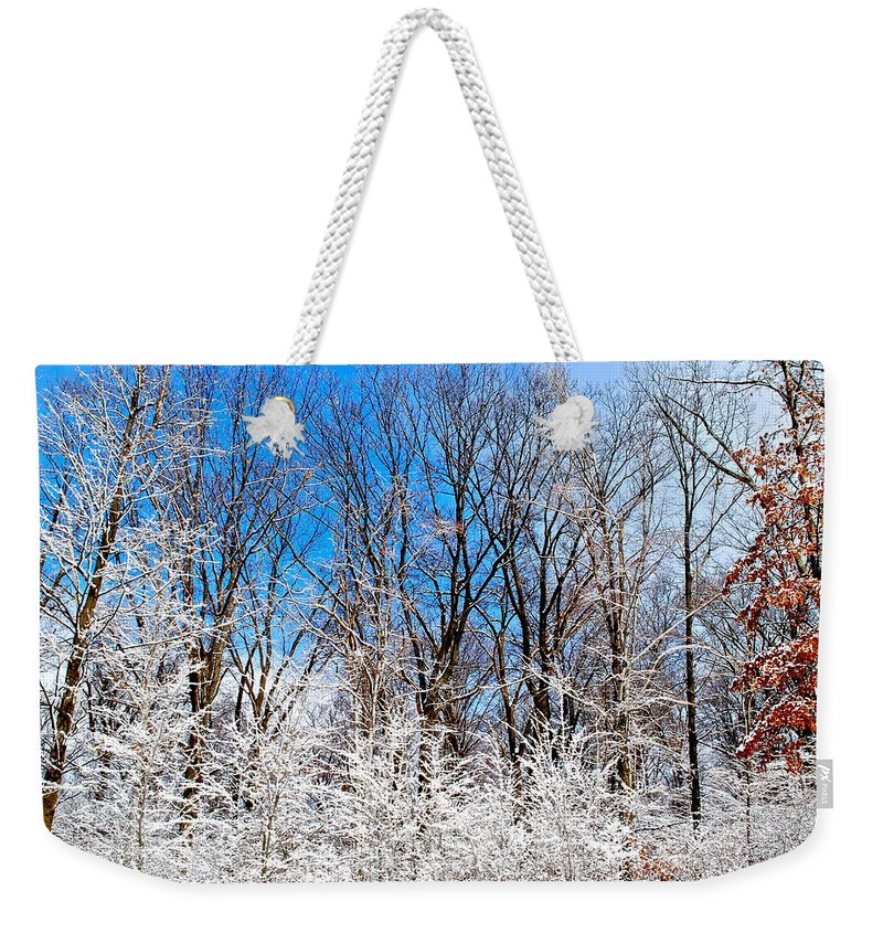 Winter Weekender Tote Bag featuring the photograph Winter Wonderland by Frozen in Time Fine Art Photography