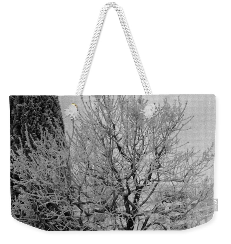 Winter Weekender Tote Bag featuring the photograph Wintery Tree by Mike Wheeler