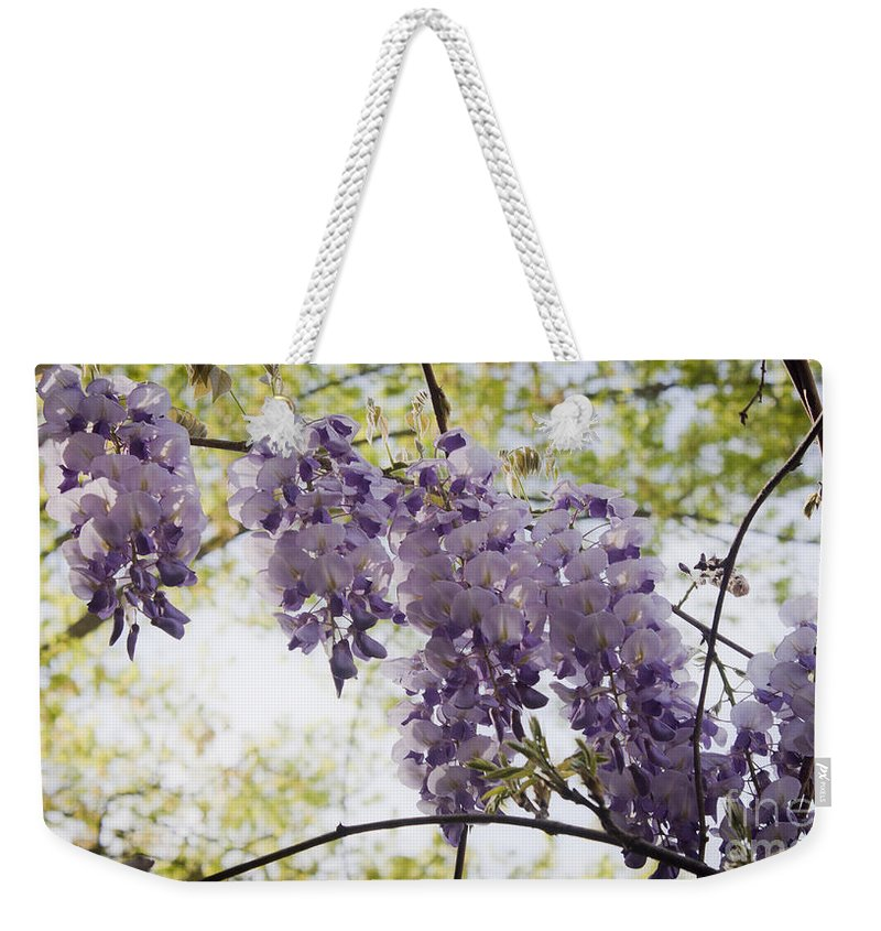 Wisteria Weekender Tote Bag featuring the photograph Wisteria Row by Teresa Mucha