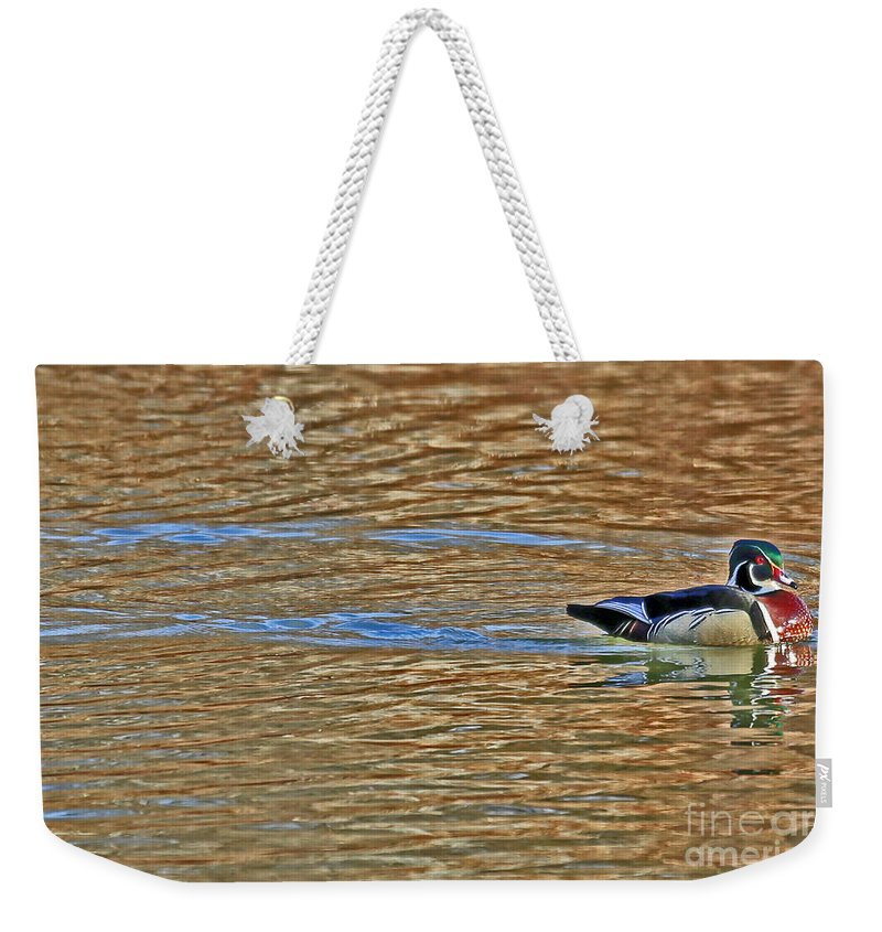 Wood Duck Weekender Tote Bag featuring the photograph Wood Duck by Elizabeth Winter