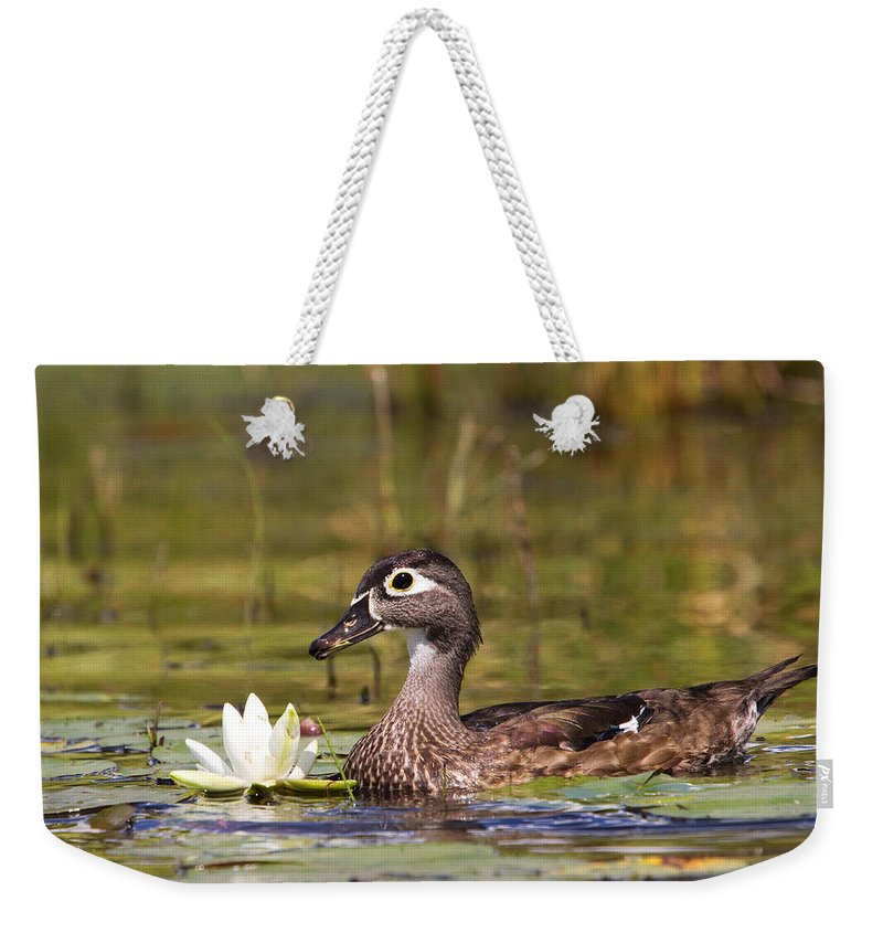 Duck Weekender Tote Bag featuring the photograph Wood Duck by Stephanie McDowell