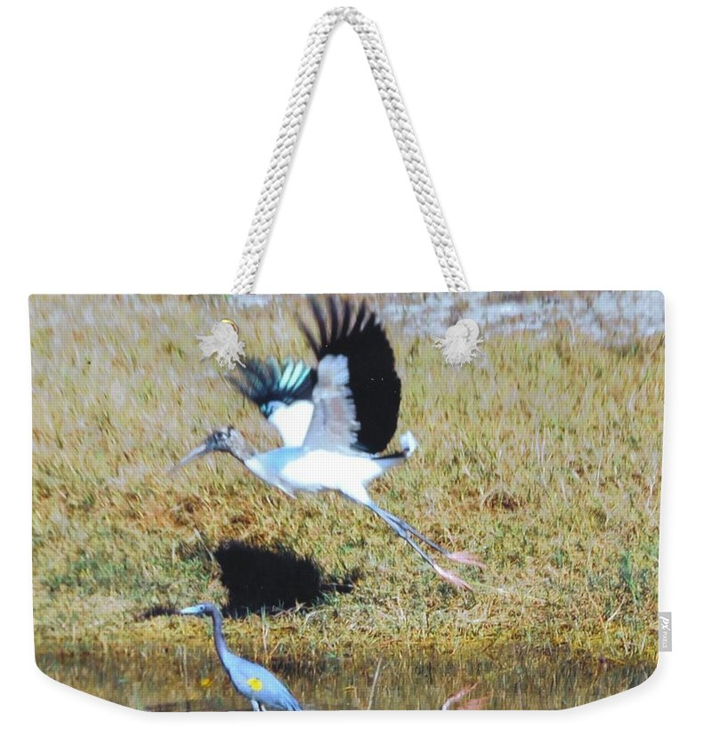 Taking Flight Weekender Tote Bag featuring the photograph Wood Stork And Blue Heron by Robert Floyd