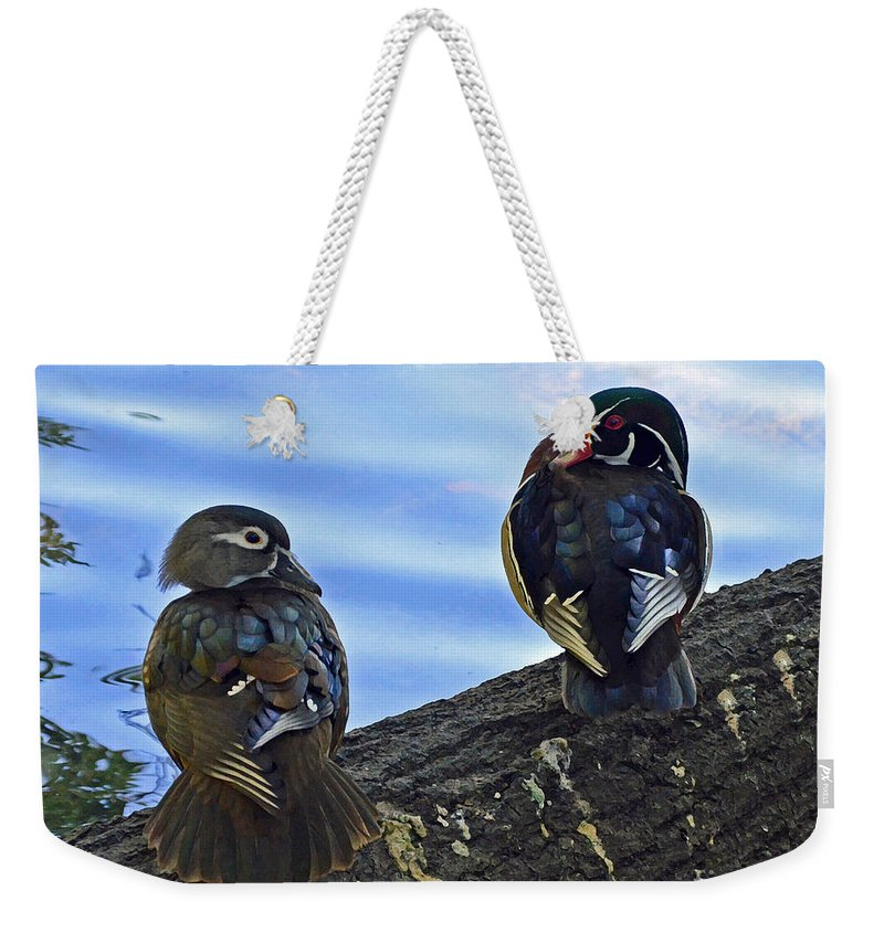 Wood Ducks Weekender Tote Bag featuring the photograph Wood You Love Me Forever by Robert Meanor