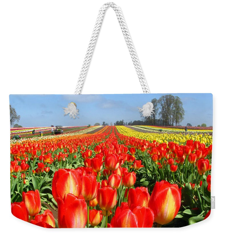 Tulip Weekender Tote Bag featuring the photograph Woodburn Tulip Fields by Lisa Foster