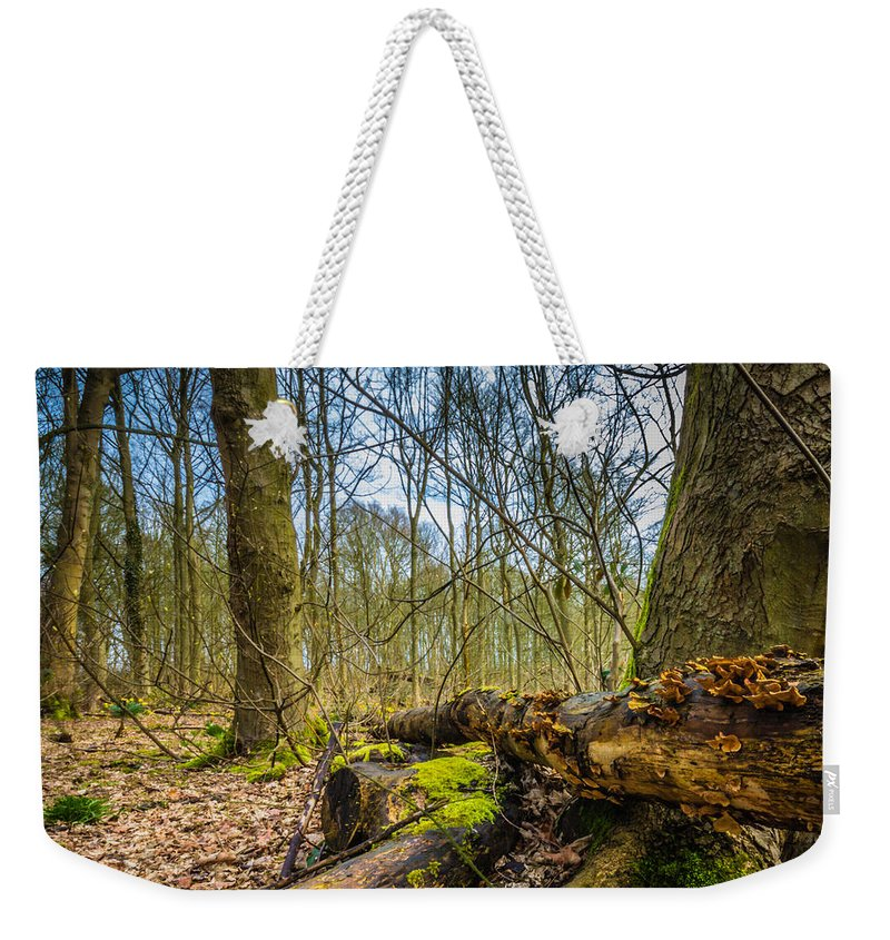 Awn Oconnor Weekender Tote Bag featuring the photograph Woodland Fungi by Dawn OConnor