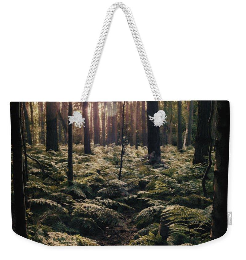 Forest Floor Weekender Tote Bags
