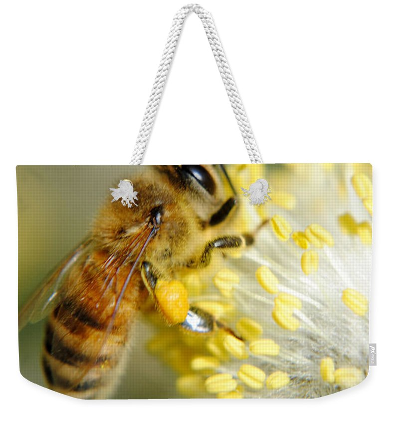 Bee Weekender Tote Bag featuring the photograph Worker Bee by Frozen in Time Fine Art Photography