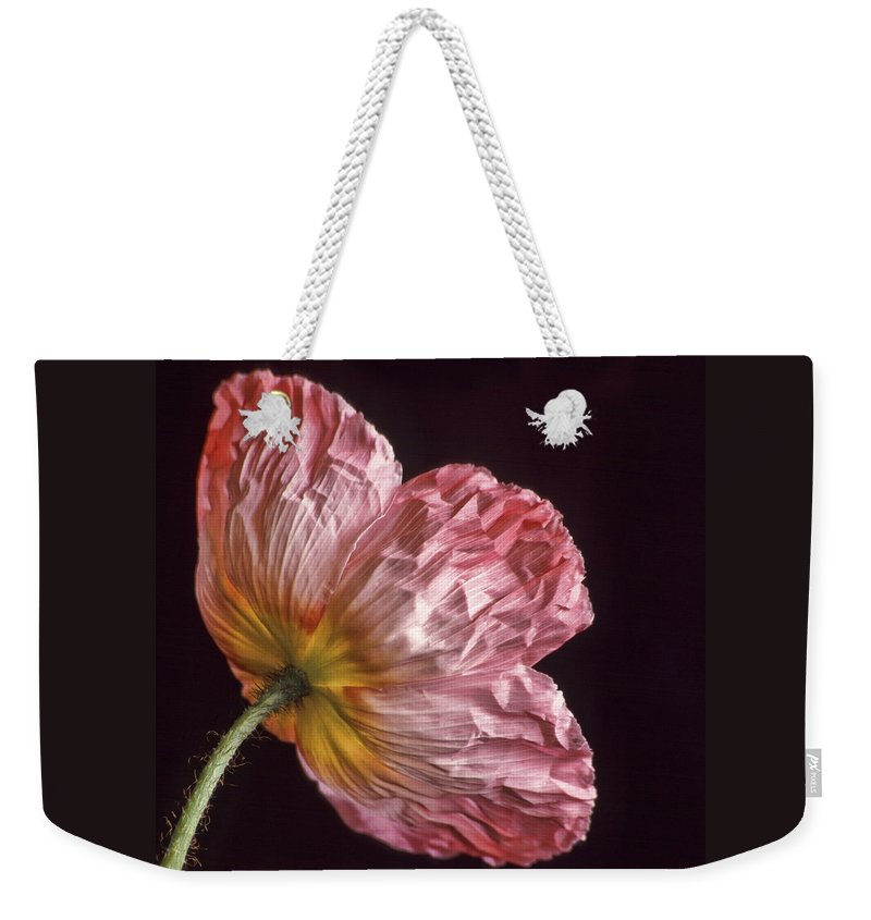 Bloom Weekender Tote Bag featuring the photograph Wrinkled Rose by David and Carol Kelly