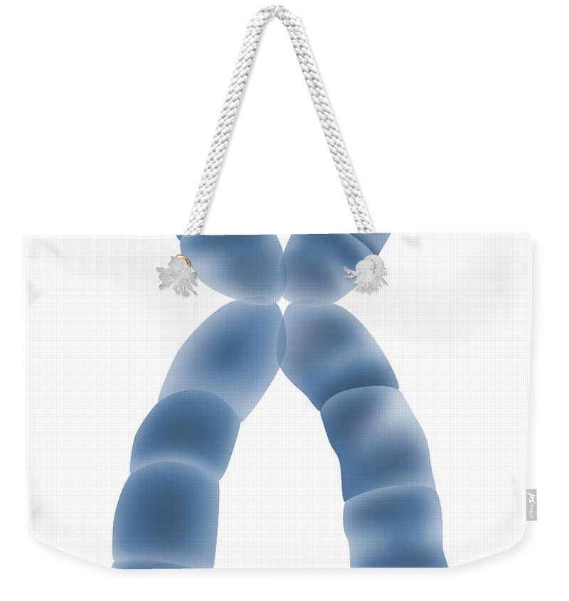 Illustration Weekender Tote Bag featuring the photograph X Chromosome, Illustration by Gwen Shockey