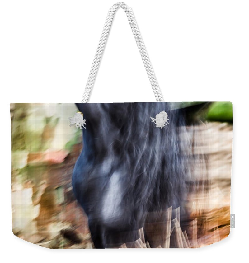 Horse Weekender Tote Bag featuring the photograph Xengo by Edgar Laureano