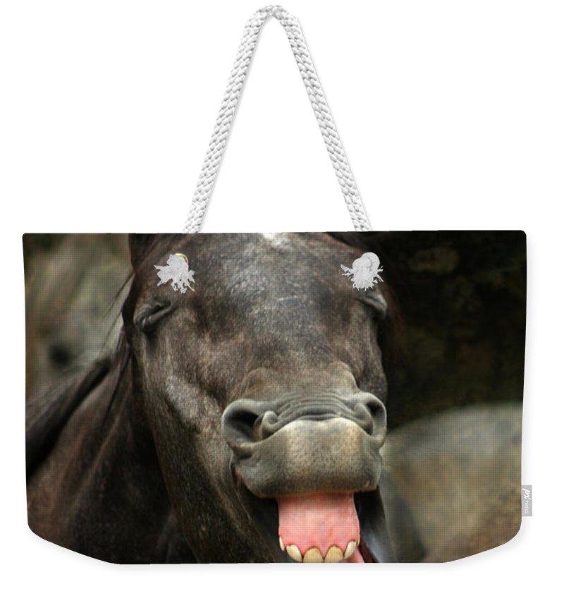 Horse Weekender Tote Bag featuring the photograph Yawn by Angel Ciesniarska