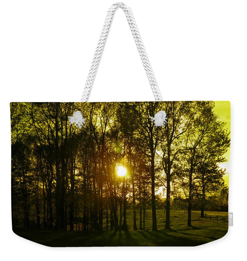 Wood Weekender Tote Bag featuring the photograph Yeller Wood by Nick Kirby