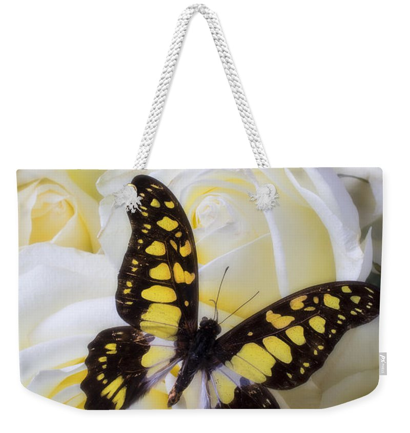 Yellow And Black Weekender Tote Bag featuring the photograph Yellow And Black Butterfly by Garry Gay