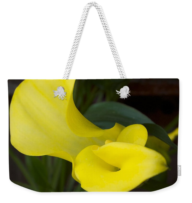 Cala Lily Weekender Tote Bag featuring the photograph Yellow Cala by David Stone