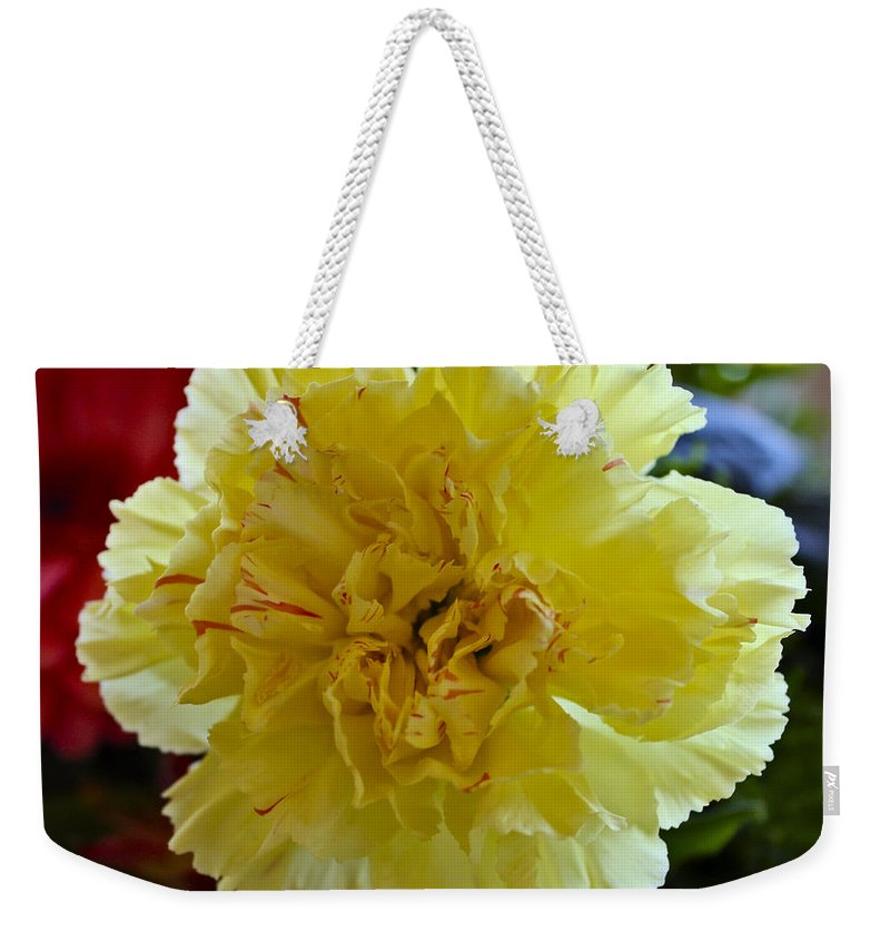 Carnation Weekender Tote Bag featuring the photograph Yellow Carnation Delight by Kurt Van Wagner