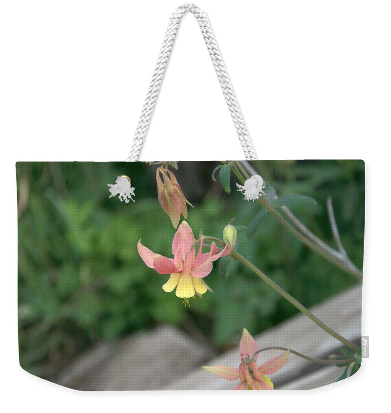 Yellow Weekender Tote Bag featuring the photograph Yellow Columbine 2 by Frank Madia