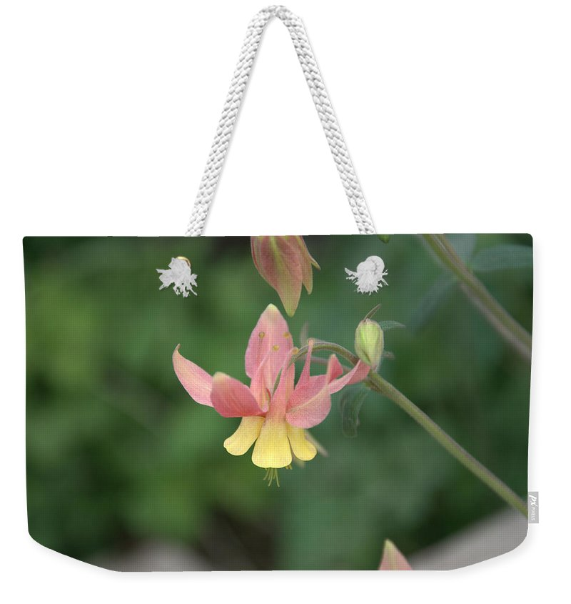 Flower Weekender Tote Bag featuring the photograph Yellow Columbine by Frank Madia