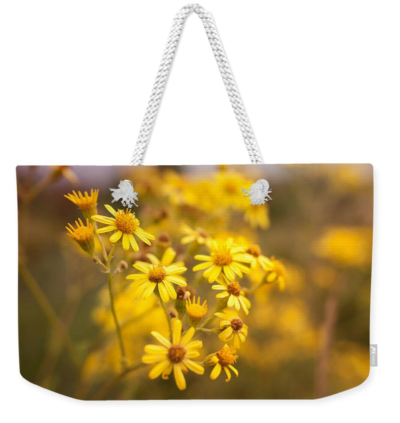 Country Weekender Tote Bag featuring the photograph Yellow Countryside by Miguel Winterpacht