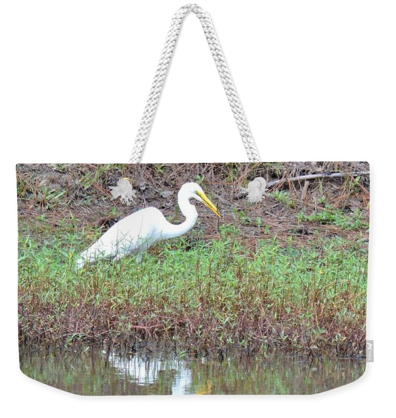 Yellow-eyed Weekender Tote Bag featuring the photograph Yellow-eyed Beauty by Maria Urso