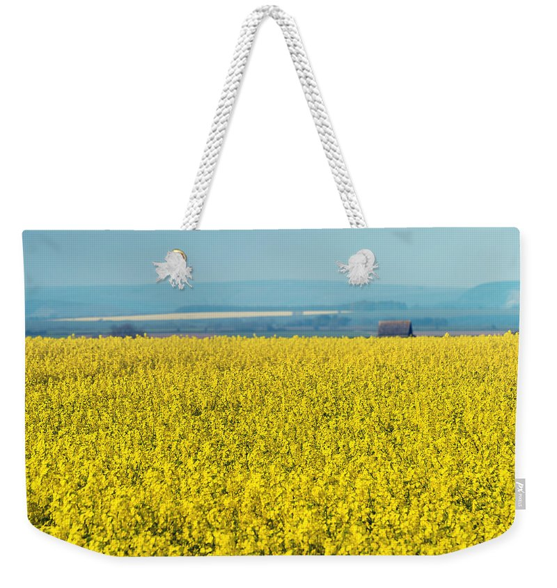 Bloom Weekender Tote Bag featuring the photograph Yellow Field by Svetlana Sewell