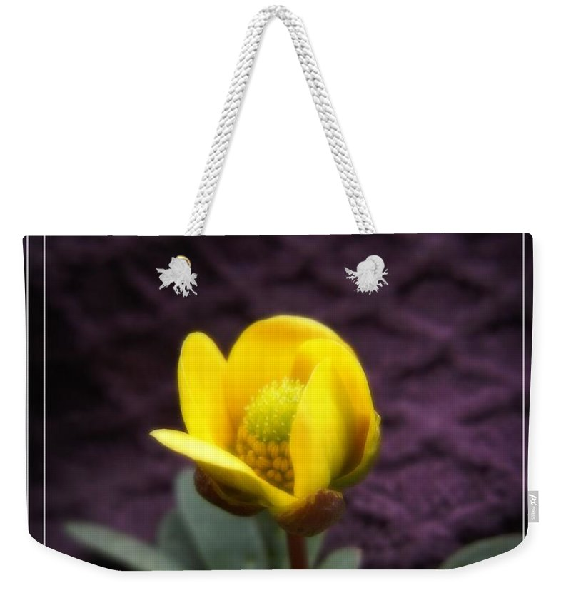 Flower Weekender Tote Bag featuring the photograph Yellow Flower by Jamie Johnson