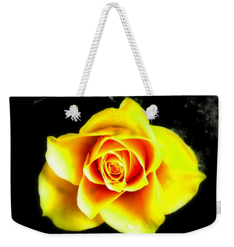 Plant Weekender Tote Bag featuring the photograph Yellow Flower On A Dark Background by Steve Kearns