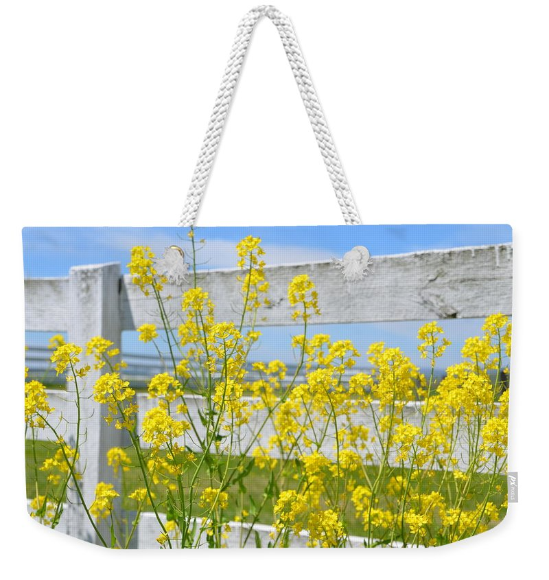 Yellow Weekender Tote Bag featuring the photograph Yellow Flowers And A White Fence by Bill Cannon
