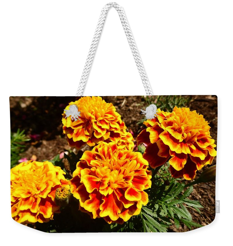 Yellow Weekender Tote Bag featuring the photograph Yellow Flowers by Karl Rose