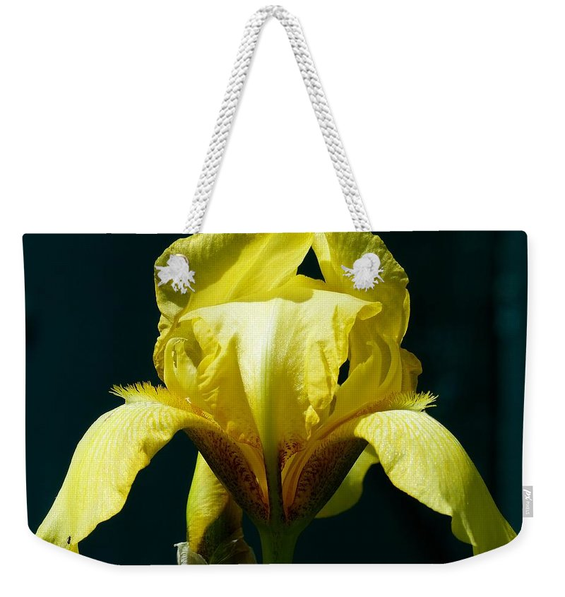 Outdoors Weekender Tote Bag featuring the photograph Yellow Glory by Charles Ford