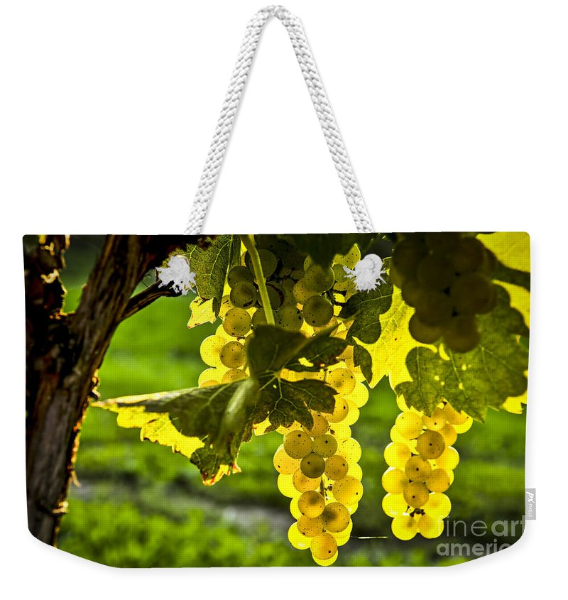 Green Weekender Tote Bag featuring the photograph Yellow Grapes In Sunshine by Elena Elisseeva