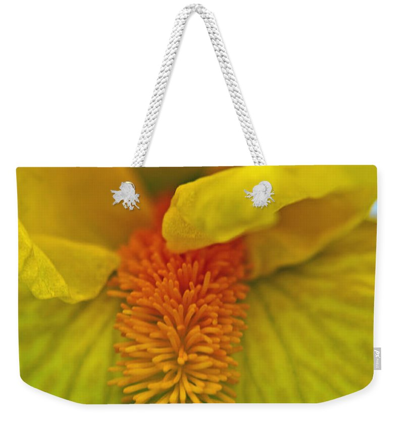Iris Weekender Tote Bag featuring the photograph Yellow Iris Beard by Tikvah's Hope