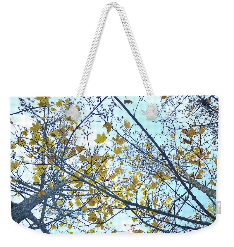 Landscape Weekender Tote Bag featuring the photograph Yellow Leaves Vintage by Guido Montanes Castillo