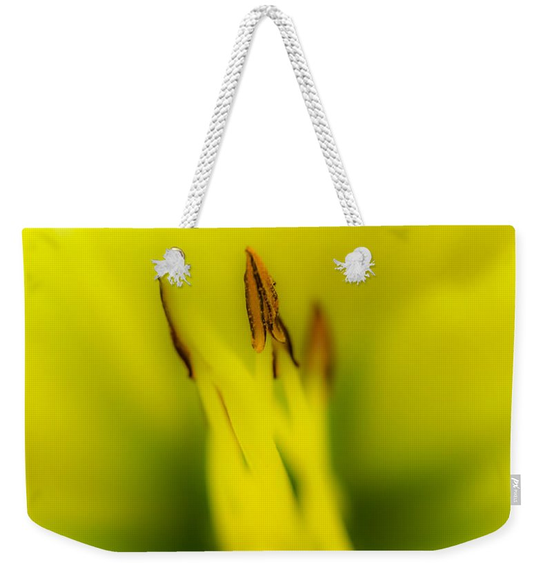 Flower Weekender Tote Bag featuring the photograph Yellow Lily by Gareth Burge Photography
