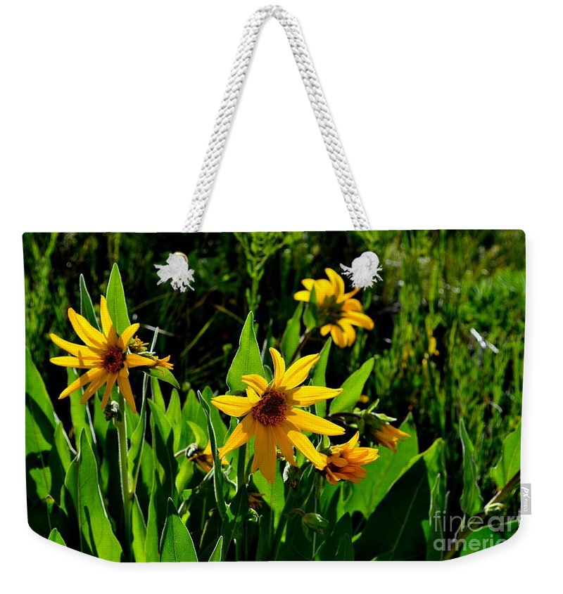 Yellow Weekender Tote Bag featuring the photograph Yellow Mountain Flowers by Crystal Miller