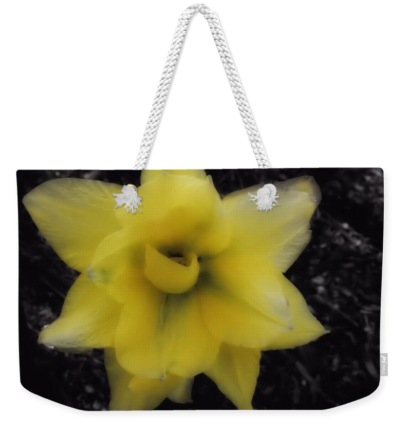 Tulip Weekender Tote Bag featuring the photograph Yellow Parrot Tulip by John Feiser