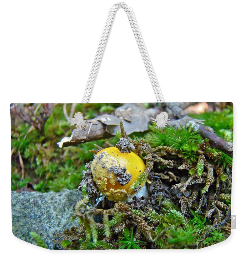 Mushroom Weekender Tote Bag featuring the photograph Yellow Patches Baby Mushroom - Amanita Muscaria by Mother Nature