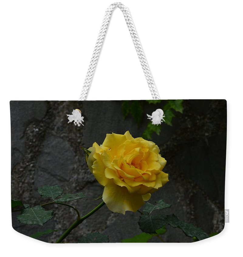 Rose Weekender Tote Bag featuring the photograph Yellow Rose by Dany Lison